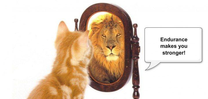 【自己アピールに便利!】積極的な性格を表す英語表現ー英語履歴書・面接前必見!